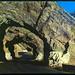 Triple Tunnels