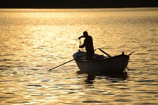 Gölyazı Apolyont