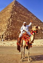 Welcome to Egypt (gerard eder) Tags: world travel reise viajes africa egypt egipto ägypten cairo gizeh giza pyramiden pyramides piramides animals animales camel paisajes panorama people peopleoftheworld tiere outdoor