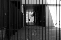 Through railings (pascalcolin1) Tags: paris13 homme man grilles raillings lumière light ombre lumiere soleil sun photoderue streetview urbanarte noiretblanc blackandwhite photopascalcolin 50mm canon50mm canon