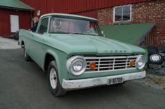 1965 Dodge D100 (Stig Baumeyer) Tags: 1965dodged100 dodge d100 mopar 1965dodge dodged100 pickup pickuptruck