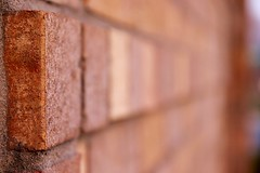 Mind the Brick! (Haytham M.) Tags: outdoors outdoor details house home street close texture brick wall
