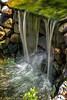 Slow Mo Water (lorinleecary) Tags: water cambria gardenwaterfall californiacentralcoast stream splash motion rocks everythingscenery