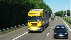 Scania R480 E4 Topline 5-Series - Hofmans BV Oss, Nederland (Celik Pictures) Tags: spotted e314 belgië nederland autobahn snelweg autosnelweg highway freeway transport in action going to gaiazoo kerkrade beringen cse cargo service europe bv oss