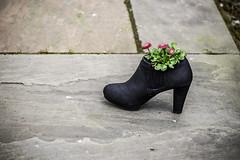Bootiful (tootdood) Tags: canon6dmkii newislington manchester found street art bootiful boot floral arrangement flowers thisbootwasntmadeforwalking