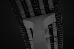 L1050462 (Zengame) Tags: leica leicasl leicasltyp601 sl summilux summiluxsl50mmf14asph architecture bridge illuminated illumination japan landmark lightup night rainbowbridge shibaura tokyo tokyobay typ601 ズミルックス ズミルックスsl ライカ ライトアップ レインボーブリッジ 夜 日本 東京 東京湾 橋 芝浦 港区 東京都 jp
