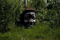 Urban Art (michael_hamburg69) Tags: itzehoe germany deutschland schleswigholstein kreissteinburg planetalsen kultur streetart urbanart face gesicht stencil