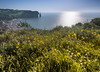At the edge of meadow (Sizun Eye) Tags: meadow etretat cliffs sunlight englishchanel lamanche town longexposure day sizuneye nikond750 nikkor1424mmf28 1424mm nisifilters leefilters bigstopper normandie france