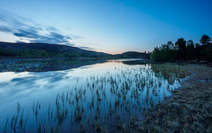 Local Loch (Highlandscape) Tags: 2018 iainmacdiarmid landscape sunset mirror nature reflection reflections lochnabàruaidhe outdoor rural hill rocks countryside reeds silhouette glen cloud twilight highlandscapezenfoliocom uk dusk spring natural birch drumnadrochit highlands le water solar culnakirk beauty a833 longexposure lighting colour loch trees highlandscape unitedkingdom scotland olympus em5markii plants flowers weather sky kiltarlity ecosse may birchtree highland