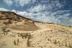 scarista dunes (Impact Imagz) Tags: isleofharris outerhebrides visitscotland visitouterhebrides hebrides hebridean hebrideanlandscapes hebrideanbeaches westernisles scotland sand seascape beachscape canon sanddunes scarista