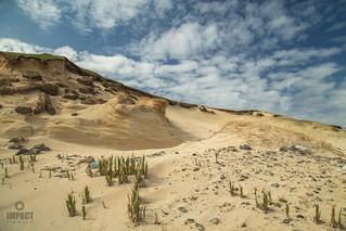 scarista dunes