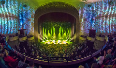 _DSC3850 (capitoltheatre) Tags: thecapitoltheatre capitoltheatre thecap 1071 thepeak moontaxi brandonniederauer taz mainland birthday housephotographer livemusic live portchester portchesterny pop