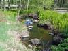 Nichols Creek (M.R.Kirk) Tags: nicholscreek waupaca creek river stream water rocks glacier granite spring trees green