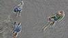 im Hof 20180511_08 (wos---art) Tags: bildschichten dreiergespräch zudritt imhof frauen mann vonoben vogelperspektive radfahrer