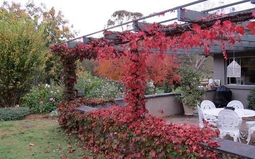 548 Castledoyle Road, Armidale NSW