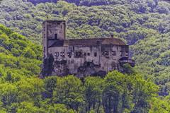 Castle Greifenstein (a7m2) Tags: greifenstein castle danube römer wandern aussichtspunkt travel tourismus loweraustria rittersaal klosterneuburg