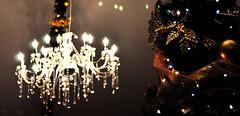 Dinner time decorations (DameBoudicca) Tags: malta malte マルタ valletta lavaleta lavalette lavalletta バレッタ chandelier kristallkrona kronleuchter lüster lámparadearaña araña lustre lampadario シャンデリア christmastree christmas julgran jul weihnachtsbaum tannenbaum weihnachten árboldenavidad navidad sapindenoël noël alberodinatale natale クリスマスツリー クリスマス