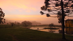 Sunrise (Luiz Menin) Tags: sunrise cold frio nascer sol araucária lago neblina paisagem cambara landscape