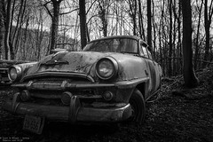 Pink Cadillac (Dennis van Dijk) Tags: urbex ue eu europe germany urban exploration car cars classic bw blackandwhite black white vintage retro forest precious beauty moody rust lost found decay derelict abandoned rotten left behind american