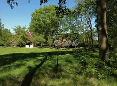 Rural living in Ratum near Winterswijk - Achterhoek (joeke pieters) Tags: 1390491 panasonicdmcfz150 ratum winterswijk achterhoek gelderland nederland netherlands holland landschap landscape landelijk rural seringen lilacs sering lilac was laundry hff