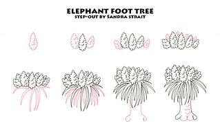 Elephant Foot Tree Step-out