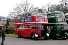 Ensignbus, RT8 - FXT183 (James Excell's Bus and Coach Photos) Tags: aecregent londonpassengertransportboard preserved londonbusmuseumspringgathering2018 londontransport