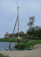 Paddling pole. (Les Fisher) Tags: telegraphtuesday telephonepole