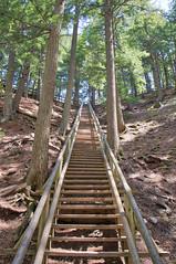 Jacob's Ladder Victoria Park Truro Nova Scotia (internat) Tags: 2018 canada novascotia ns truro victoriapark jacobs ladderaurora hdrhdreos m5