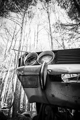Eternal Optimist (Wayne Stadler Photography) Tags: abandoned preserved junkyard georgia classic automotive derelict overgrown vehiclesrust rusty retro vintage oldcarcity rustographer rustography white
