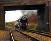 Uncommon Cromwell (Treflyn) Tags: br british railways standard class 7mt 70013 olivercromwell bridge kinchley lane great central railway gcr thereddragon tle timeline events photo charter