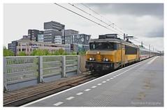 """Nederlandse Spoorwegen 1750 """" IC-Berlijn"""" Lelystad-Centrum ( Nederland)"""