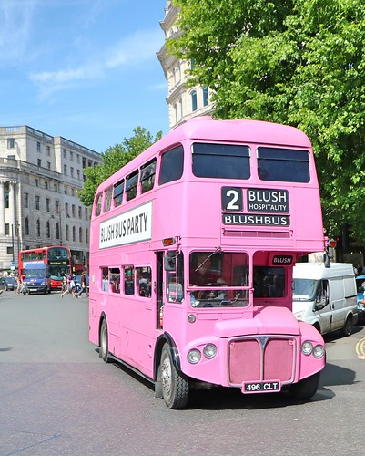 Blush Bus Party - RMC1496 - 496CLT