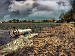 Field (Fouquier ॐ) Tags: field skyline clouds iphone 6s enlight quickshot prisma polders berendrecht antwerp belgium ruralscene rural agriculture farmland