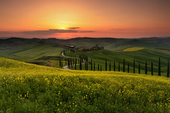 Tuscan Gold (Andrew G Robertson) Tags: tuscany toscana sunset agriturismo baccoleno asciano pienza val dorcia italy sunrise cypress
