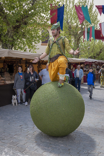 "XVII Mercado Medieval de La Adrada • <a style=""font-size:0.8em;"" href=""http://www.flickr.com/photos/133275046@N07/41857557041/"" target=""_blank"">View on Flickr</a>"