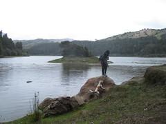 """Embalse """"La regadera"""", Usme, Bogotá (LcamilaTP) Tags: lago montaña agua cielo campoabierto bosque bogotá colombia paisaje árbol"""