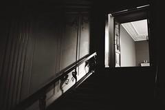Glyptotek (Jill Slater) Tags: 35mm film canonae1 canonfd agfaapx blackandwhite bw nycarlsbergglyptotek københavn danmark dk copenhagen denmark museum artgallery