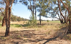 Lot 193 Broad Street, Old Junee NSW