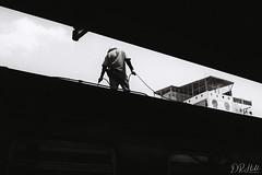 On the Roof (D. R. Hill Photography) Tags: bangkok asia southeastasia thailand hualamphong train transport station trainstation carriage blackandwhite monochrome grain film analog 35mmfilm 135 contax contaxg1 g1 carlzeissplanar35mmf2 planar zeiss 35mm primelens fixedfocallength jch jchstreetpan400 japancamerahunter