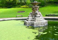 Green algae in the Miller Park fountain (Tony Worrall) Tags: preston lancs lancashire city england regional region area northern uk update place location north visit county attraction open stream tour country welovethenorth nw northwest britain english british gb capture buy stock sell sale outside outdoors caught photo shoot shot picture captured park green summer spring outdoor millerpark victorian beauty nice outinthegreen greenery wet water fountain nature natural plants overgrown pool greenalgae algae
