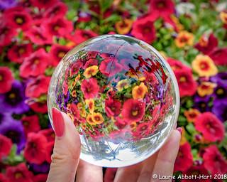 20180516  Floral Fun  13653-Edit