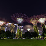 Gardens By The Bay thumbnail