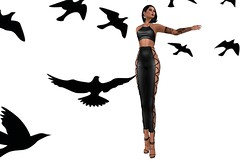 Blackbird Flying In The Dead Of Night (Anne Daumig) Tags: slhairstyle virtual fashion women secondlife sl couture jewelry chic fantasy roleplay sexy avatar style fashionista blog makeup hairstyles shoes boots sandals footwear slfashionartphotography uniquecreations annedaumig lelutka maitreya meshbody meshhead shyladiggs onyxleshelle thoracharron jadenartresident bento uber kustom9 treschic pseudo smithdash fashionablydead fd toastbard saga cняιssчƙυɳʈмόяαηε christelmorane doux dᴀᴠɪᴅcᴏᴏᴘᴇʀ pms pimpmysht sandowlviolet ayrun nuriadelunaresident suicidalunborn eleanorcyberstar alaskametro alaskametropolitan arte miriamlemondrop