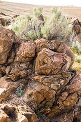 Rocks that Rock (O.S. Fisher) Tags: antelopeisland greatsaltlake utah highdesert outdoors pattern rocks sagebrush stone