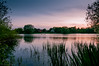 _CNE8656 (Chris Elmy) Tags: swan d300 nikon sunset water landscape tokina 1116mm