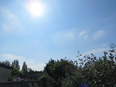 Sunday, 20th, Wispy clouds IMG_8717 (tomylees) Tags: essex morning spring may 2018 20th sunday weather blue
