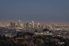 Night of Los Angeles (songyol) Tags: canon songyol nightoflosangeles losangeles city building lanscape skyline