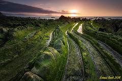 Green Dragon II. (Ernest Bech) Tags: euskadi vizcaya bilbao barrica rocks roques rocas ocaso postadesol sunset landscape longexposure llargaexposició llums lights luces