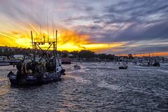 Sunset, USA, California, Monterey (St/W) Tags: usa california monterey leicam240 leicasummicron2035asphv1 nikcep4