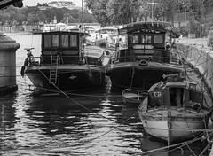 Bord à bord. Paris, mai 2018 (Bernard Pichon) Tags: paris îledefrance france fr bpi760 fr75 péniche pont seine fleuve